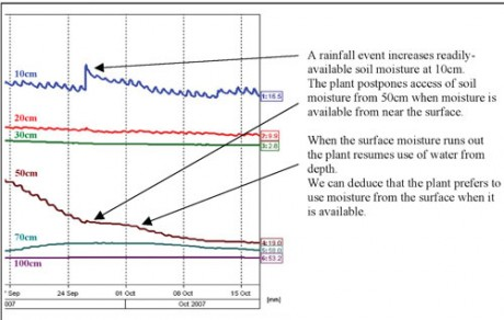 Soil Moisture Figure 1